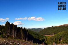 Aufnahme von Mitte Oktober 2016 nahe Drei Annen bei Wernigerode im Harz direkt an den Gleisen der Harzer Schmalspurbahn. Der Blick geht in das Drängetal.  #hsb #dreiannen #wr #wernigerode #drängetal #harzerschmalspurbahn #harz #warndernimharz #harzquerbahn