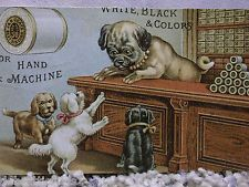Pug Dog & Her Baby Puppies in Thread Store-Victorian Trade Card-J&P Coats Thread