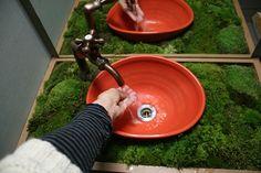 「関西コケスポット」のブログ記事一覧-かわいいコケ ブログ  I'm loving the moss!