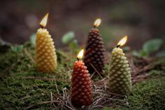 pine cone candles as a centerpiece for the table! Natural Christmas, Noel Christmas, Christmas Morning, Country Christmas, Candle Centerpieces, Candle Lanterns, Yule, Cottage In The Woods, Wood Cottage