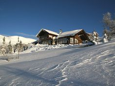 Cabin in Vassfaret mountains - Flå. Located 950 masl, and has a nice view with excellent conditions for hiking or cross-country skiing year-round.