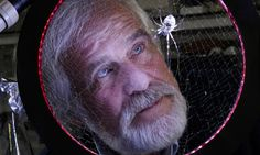"""Fritz Vollrath on spider research: """"We have, for example, a project looking at using silk to make heart muscle,"""" he says. """"We discovered if you use a type of silk in this way and put heart cells on it, they feel at home and grow and start beating. The silk is soft. So we made a little heart muscle that can beat. And the silk is biodegradable, so you could implant something that you want to disappear once the cells have grown on it."""