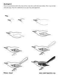 mockingbird - Google Search