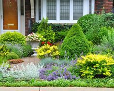 Lawnless Texas landscaping design for front yard