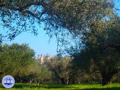 anopoli-crete-walking-in-greece - Zorbas Island apartments in Kokkini Hani, Crete Greece 2020 Village Festival, Heraklion, Crete Greece, Fields, Greek, Walking, Island, Park, Water