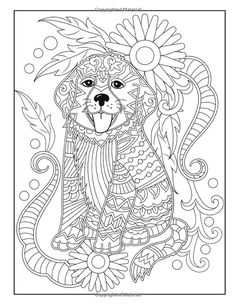 Cubs Adult Colouring Page Colouring In Sheets