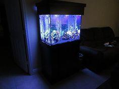 65 Gallon Aquarium Tank