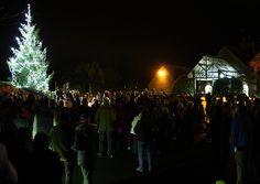 Light up a Life - Joseph Weld Hospice - December 2012
