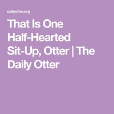 That Is One Half-Hearted Sit-Up, Otter | The Daily Otter