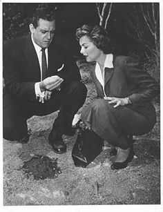 Perry Mason amd Della Street. Loved this show!
