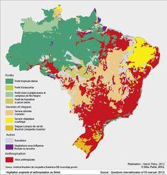 Favelas Bresil Carte.Les 136 Meilleures Images De Le Bresil Etude Geographique