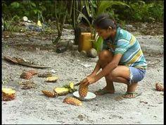 Ongeveer vijfduizend jaar geleden trokken Arowakken die langs de Orinoco leefden (Barrancos-cultuur) vanuit het westen de Guyana's binnen, en verdreven de oorspronkelijke Indiaanse bevolking van de kuststreek naar de savanne.Omstreeks 1100 vielen Cariben het gebied binnen. Aan de terpencultuur kwam een einde; de Arowakken leefden vanaf die tijd van kostgrondjes meer in het binnenland. Arowakse vrouwen waren goede pottenbaksters. Ze werden vaak door Cariben ontvoerd.