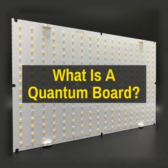You keep hearing about quantum board LED grow lights, but what are they exactly? Good Find, Led Grow, Sell Diy, Plant Growth, Good Company, Diy Kits, White Light, Boards, Learning