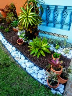 Best 11 41 Easy Landscaping Ideas for Your Front Yard - All For Garden Tropical Landscaping, Garden Design, Landscaping Tips, Succulents, Garden Paths, Garden Decor, Rock Garden Landscaping, Landscape, Succulent Landscape Design