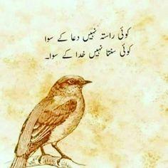 Heart Touching Shayari - Heart Touching Poetry in Urdu Funny Quotes In Urdu, Poetry Quotes In Urdu, Urdu Funny Poetry, Love Quotes In Urdu, Urdu Love Words, Best Urdu Poetry Images, Urdu Poetry Romantic, Love Poetry Urdu, Quotations