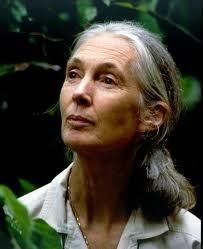 """""""What you do makes a difference, and you have to decide what kind of difference you want to make."""" Jane Goodall."""