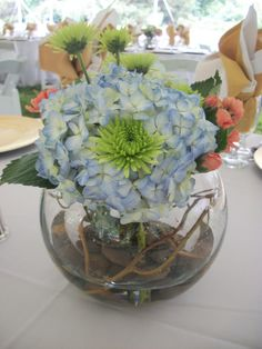 Blue Hydrangea, Green Athos Daisies, Orange Mini Carnations, Curly Willow. Inside vases contain Orange Gerbera Daisies, White Hydrangea, and Blue Iris, and river rock in all.  Flowers - Designs by Victoria Floral
