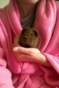 Piggie-smile ^_^