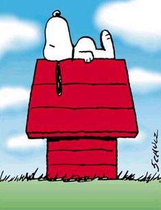 """""""Sigue mirando hacia arriba… ese es el secreto de la vida."""" – Snoopy"""