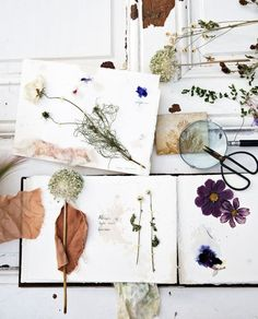 Diy Adult, Flatlay Styling, Flower Frame, Flower Centerpieces, Dried Flowers, Home Decor Inspiration, Fun Projects, Floral Design, Gallery Wall
