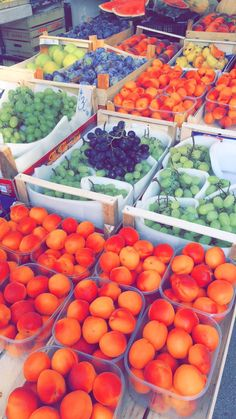 Market, place where you can find fresh, local fruits and vegetable •