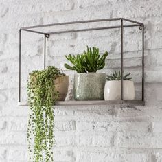 Helping to create a beautiful botanical display, the Farringdon Box Shelf looks striking with trailing plants hanging over the edge. The contemporary open design has a sheet metal base with a lip to stop pots and accessories slipping off. Box Shelves, Plant Shelves, Display Shelves, Kitchen Shelves, Kitchen Display, Bathroom Shelves, Bedroom Wall Shelves, Shelving Units, Storage Units