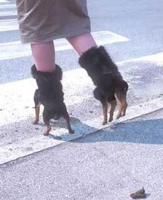 "I think her ""dog"" boots just took a dump on the sidewalk. Do you think she carries poop bags?"