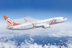 O Boeing 737-800 da Gol pode transportar até 189 passageiros (Gol)