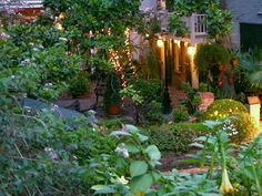 Sweet little patio garden from Miss Cote De Texas blog spot.It is the authors lovely yard.I am in love with the vine-covered balcony!I notice peach Datura(Angel Trumpets)in the foreground-Hawkmoths must make a beeline to this little jewel of a patio garden.It is proof that even a small space can become a garden paradise with careful planning & a little love! [image%255B76%255D.png]