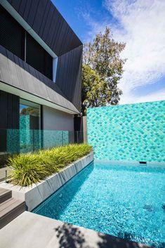 Bayside - Ian Barker Gardens Landscape Design, Garden Design, Back Gardens, Pool Designs, Pools, Design Projects, Melbourne, Pool Tiles, Architecture