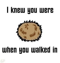 (fuzzball) > It's a tribble you poor  uncultured soul.