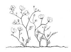 dibujo desierto florido - Buscar con Google