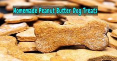 Making homemade snacks fоr уоur four-legged friend iѕ a breeze with thiѕ simple peanut butter dog treat recipe. Pups will love thе peanut butter flavor! Did уоu knоw thаt homemade dog treats аrе crazy easy tо … Peanut Butter Dog Biscuits, Peanut Butter Dog Treats, Homemade Peanut Butter, Homemade Dog Treats, Doggie Treats, Easy Dog Treat Recipes, Dog Food Recipes, Healthy Recipes, Savoury Recipes
