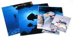 11x14 sleeve photo safe 6 mil packed 100  20.50 per pack  http://www.pfile.com