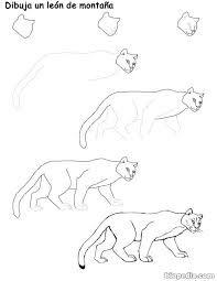 Resultat d'imatges de PUMA ANIMAL