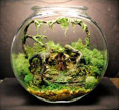 Bigfoot Man of the Forest Mini Terrarium / by Megatone230