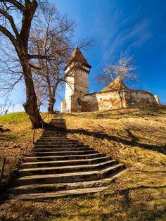 Un nou proiect de suflet – video | Ligia Pop Romania, Life
