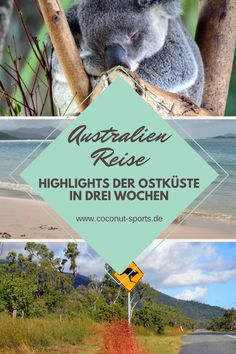Für eine Australien Reise hat man eigentlich nie genug Zeit. Wer nur drei Wochen Urlaub bekommt, schafft aber die Ostküste, Sydney und Melbourne.