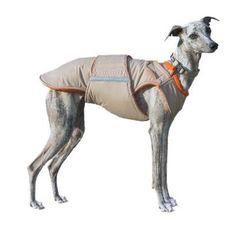Extra Warm Winter Dog Coat - Dog Jacket with underbelly protection - Whippet Dog Coat - Waterproof jacket - Custom made for your dog Warm Dog Coats, Dog Winter Coat, Warm Coat, Dog Raincoat, Hooded Raincoat, Whippet Dog, Dog Jacket, Dog Wear, Raincoats For Women