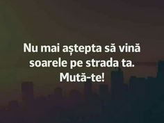Nu astepta soarele. Muta-te! R Words, Cool Words, Book Quotes, Life Quotes, Drawing Quotes, Messages, Drama, Wallpaper Quotes, Positive Quotes