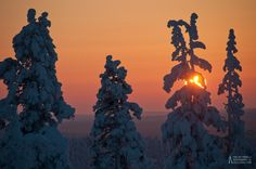 'Burning Sun' – Kaunispää, Saariselkä, Lapland, Finland – February 16th, 2011 $3.  Cabins and activities in Saariselkä http://www.saariselka.com