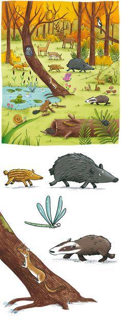 Les animaux de la forêt Teaching Kids, Kids Learning, Woodlands Camping, Edition Jeunesse, Hidden Pictures, Illustration, Tot School, School Pictures, Woodland Creatures
