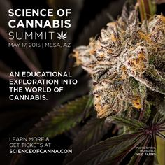 The Science of Cannabis Summit