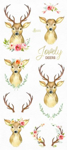 This set of 12 high quality hand painted watercolor deers with antlers and floral. Perfect graphic for wedding invitations, greeting cards, photos, posters, quotes and more.  -----------------------------------------------------------------  INSTANT DOWNLOAD Once payment is cleared, you can download your files directly from your Etsy account.  -----------------------------------------------------------------  This listing includes:  12 x Images in PNG with transparent background different…