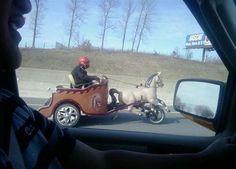 Ben Hur edition - Rides.com