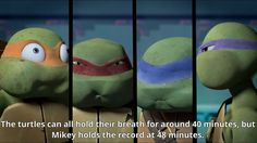 """ 26 - The turtles can all hold their breath for around 40 minutes, but Mikey holds the record at 48 minutes. "" Submitted by Anonymous"