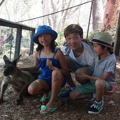 Australia Animals Activities - - - Australia Beaches Bikini - Melbourne Australia Things To Do In - Australia Bushfire Kangaroo Stray Kids Chan, Felix Stray Kids, Chris Chan, Kid Memes, Crazy Kids, Oui Oui, Kpop Boy, K Idols, Lee Min Ho