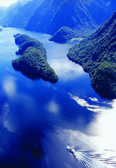 Elizabeth Island is the largest island in the inner Doubtful Sound, Fiordland NP, The South Island, New Zealand
