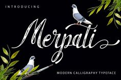 Merpati is a font scrip,brush, so, font script that is beautiful and unique, it is a model of modern calligraphy typefaces, in combination with a calligraphy writing style.