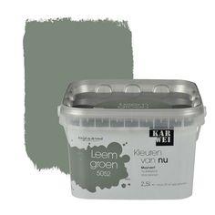 KARWEI-kleuren van Nu Wandfarbe matt tongrün l - .